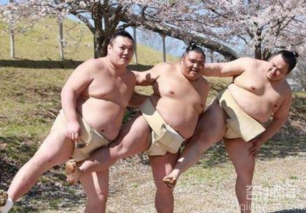 日本相扑手拍妩媚写真 看完很想吐